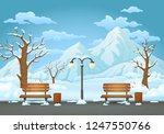 Winter Day Park. Two Benches...