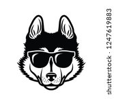 Stock vector siberian husky dog wearing sunglasses isolated vector illustration 1247619883