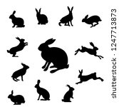 rabbit set isolated  vector... | Shutterstock .eps vector #1247713873