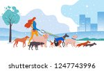 Stock vector vector illustration set cartoon style icons of dogs and personal dog walker different breeds 1247743996