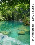 may 25  2018  blausee lake in... | Shutterstock . vector #1247751553