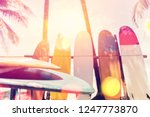 surfboard and palm tree on...   Shutterstock . vector #1247773870