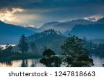 panorama of the tea plantations ... | Shutterstock . vector #1247818663