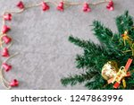 the top of the pine tree was... | Shutterstock . vector #1247863996