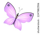 beautiful pink butterflies... | Shutterstock . vector #1247882506