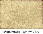 light brown background | Shutterstock . vector #1247942479