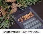 glass bottles with corks in the ... | Shutterstock . vector #1247990053