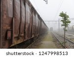 old train wagons parked in the... | Shutterstock . vector #1247998513