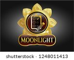 gold shiny emblem with... | Shutterstock .eps vector #1248011413