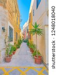 the cozy street  decorated with ... | Shutterstock . vector #1248018040