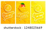 set of fresh and cold lemon... | Shutterstock .eps vector #1248025669