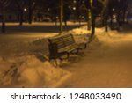 park in the evening or at night ... | Shutterstock . vector #1248033490