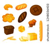 set of different kinds of... | Shutterstock . vector #1248036403
