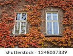 windows and walls of the old... | Shutterstock . vector #1248037339