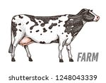 farm cattle bull or cow.... | Shutterstock .eps vector #1248043339