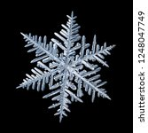 snowflake isolated on black...   Shutterstock . vector #1248047749