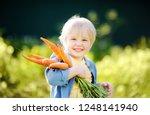 cute little boy holding a bunch ... | Shutterstock . vector #1248141940