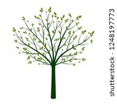 green tree with leaves. vector... | Shutterstock .eps vector #1248197773