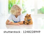 child feeding cat at home. kid... | Shutterstock . vector #1248228949