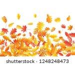 oak  maple  wild ash rowan... | Shutterstock .eps vector #1248248473