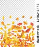 oak  maple  wild ash rowan... | Shutterstock .eps vector #1248248476