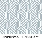 abstract geometric pattern with ... | Shutterstock .eps vector #1248333529