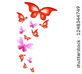color beautiful butterflies ... | Shutterstock .eps vector #1248344749