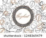 isolated vector set of nuts ... | Shutterstock .eps vector #1248365479