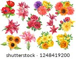 Set Of Flowers  Watercolor...