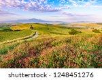 landscape scenery early in the... | Shutterstock . vector #1248451276
