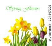 Beautiful Spring Flowers....