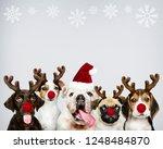 group of puppies wearing... | Shutterstock . vector #1248484870