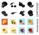 isolated object of vegetable... | Shutterstock .eps vector #1248733309