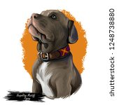 neapolitan mastiff breed ... | Shutterstock . vector #1248738880