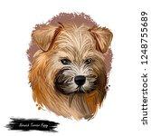 norwich terrier puppy breed... | Shutterstock . vector #1248755689