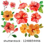 set of red and orange tropical... | Shutterstock . vector #1248854446