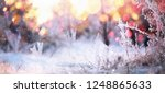 winter sunny background with... | Shutterstock . vector #1248865633