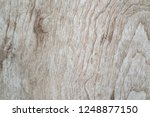 wood walls and floor for... | Shutterstock . vector #1248877150