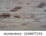 wood walls and floor for... | Shutterstock . vector #1248877153