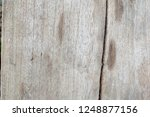 wood walls and floor for... | Shutterstock . vector #1248877156