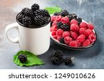 cup of ripe blackberries and... | Shutterstock . vector #1249010626