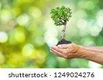 ecology concept child human... | Shutterstock . vector #1249024276