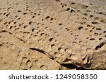natural texture of perforated... | Shutterstock . vector #1249058350