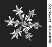 white snowflake isolated on... | Shutterstock .eps vector #1249067800