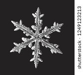 white snowflake isolated on... | Shutterstock .eps vector #1249123213