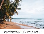 manzanillo beach in the costa... | Shutterstock . vector #1249164253