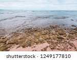 puerto viejo beach in the costa ... | Shutterstock . vector #1249177810