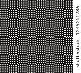 vector monochrome geometric...   Shutterstock .eps vector #1249251286