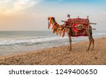 a domestic decorated camel ... | Shutterstock . vector #1249400650