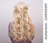 back view of an elegant trendy... | Shutterstock . vector #1249433269